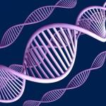 Traçabilité des cambrioleurs grâce à de l'ADN synthétique